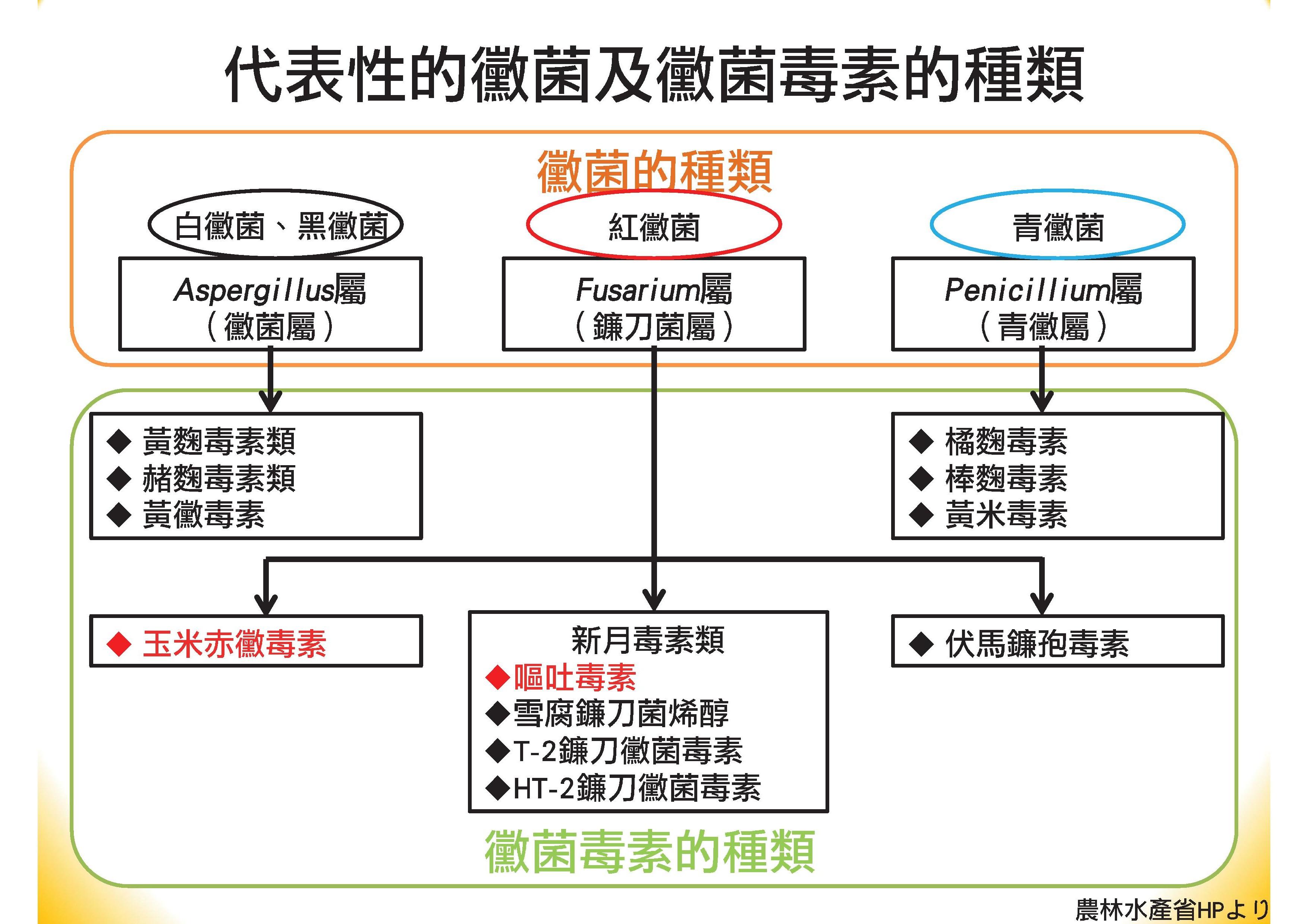 肝寶吸附劑簡報(中文).pdf00017